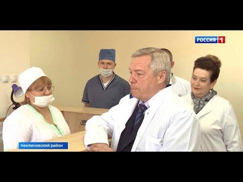 Губернатор проверил работу медицинских учреждений Неклиновского района