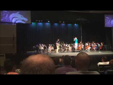 Concert performance with Orchestra