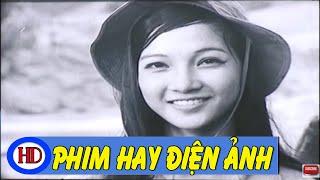 Từ Một Cánh Rừng Full | Phim Việt Nam Đặc Sắc