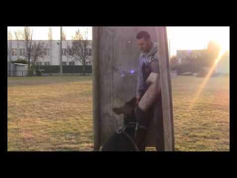 Preview video Golubaya Krov ERMIONE