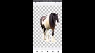 How to cut out photos on iPhone, iPad and Android using You Doodle