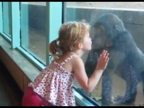 Haciendo amigos en el zoo