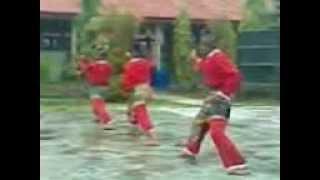 preview picture of video 'Jurus Beregu - Pencak Silat Kemenyan Putih Bungaraya Siak Sri Indrapura.3gp'