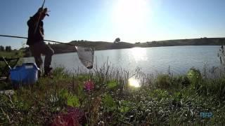 Ульяновский пруд тогульский район рыбалка
