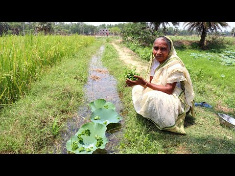 Thankuni Pata Bata Recipe | Grandmother Natural Food Recipes | Healthy Village Food