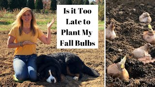 Is it Too Late to Plant my Fall Bulbs