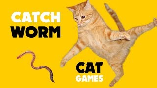 Games for cat ★ Catching WORM on screen
