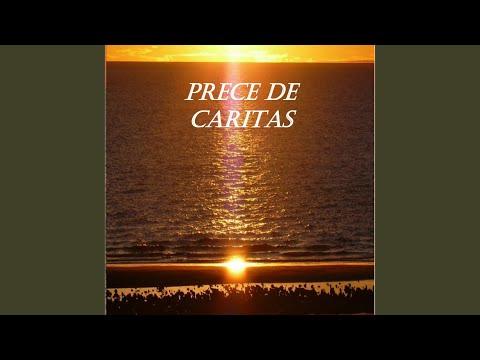download lagu mp3 mp4 Prece De Encerramento, download lagu Prece De Encerramento gratis, unduh video klip Prece De Encerramento
