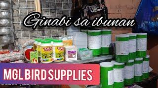MGL Bird Supplies. Ginagabi Sa Ibunan
