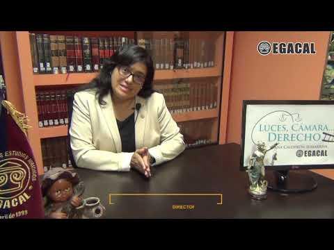 Prisión preventiva y peligro de fuga - Luces Cámara Derecho 122