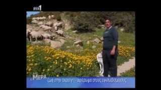 preview picture of video 'Ζωή στην Άκρα Γή - Αφιέρωμα στους Eγκλωβισμένους Κύπρου'