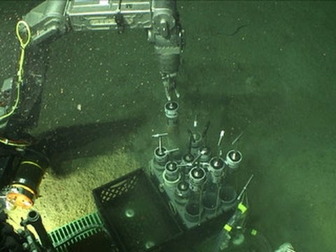 Das Öl für sitrojen ksantija 1.8 Benzin