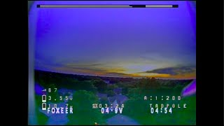 Sunset Ripping - Armattan Tadpole, Toothless 2 Nano - FPV Freestyle in the front yard