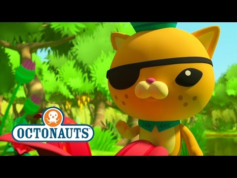 Octonauts Season 4 Exclusive Poison Dart Frogs