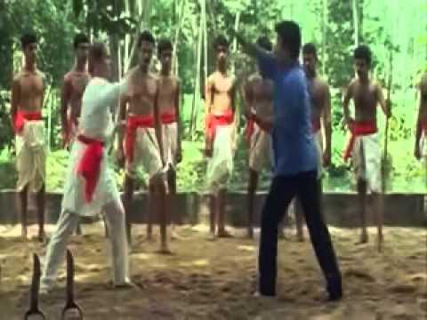 Kalaripayattu Krishnaprathap in Narasimham Malayalam Film Industry