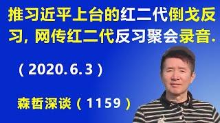 """推拥习近平上台的""""红二代""""倒戈反习,网传北京""""红二代""""反习聚会录音.(2020.6.3)"""