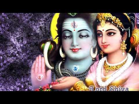 Man thari patrani banao maro man lagyo thari seva m avinash yogi new