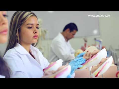 Trattamento di fungo di candida medicine antifungose