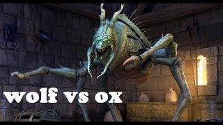 Wolf VS Ox   Elder Scrolls Legends