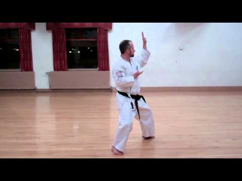 Wado Karate Pinan Shodan performed by Neil Pottinger