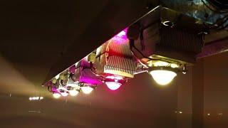 Led освещение Led Lighting