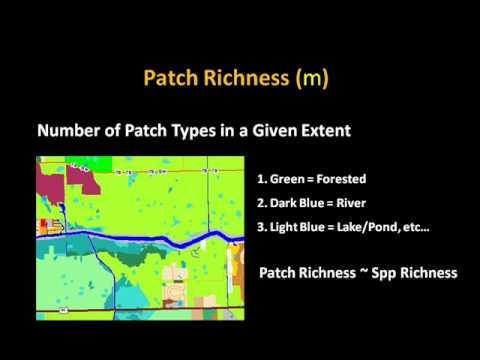 Landscape Ecology Vignette #3 -- Landscape Metrics