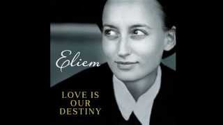 Love Is Our Destiny by Eliem