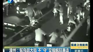Ostrich on the loose in China, knocked down twice by cars... keeps running