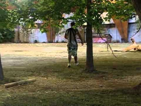 Ver competencia de año 0-los ninjas se raptan a alvaro en Español Online