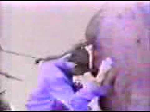 Bart e Lisa sesso video