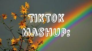 TikTok Mashup (March 2020)