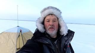 Эхолоты в челябинске для зимней рыбалки