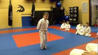 A Typical Children's Karate Class (ages 4 7) At Arashi Do Martial Arts