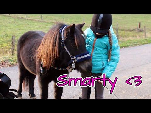 Sattel anpassen | Smartys Sattel rutscht | Marina und die Ponys