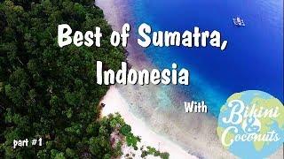 Best of Sumatra, Indonesia 2017 (Padang - Kerinci - Bukitlawang)
