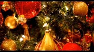 christmas dreaming    Frank sinatra    꽃살강