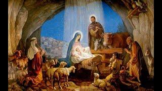 'Santa Messa della Vigilia di Natale' episoode image