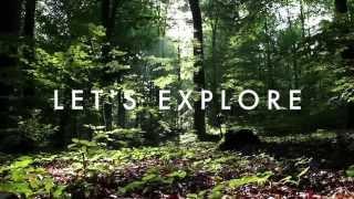Nassim Haramein - New Energy and The Resonance Academy