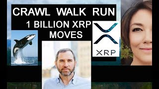Crawl... Walk ... Run  Brad Garlinghouse, Facebook ChainSpace, Kraken Crypto Facilities