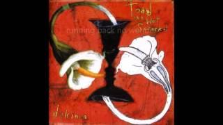 Toad the Wet Sprocket- Inside (lyrics)