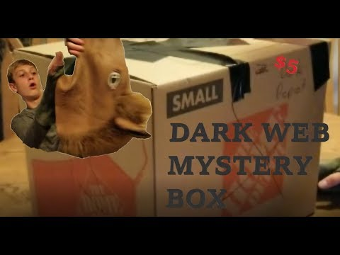 THE WORLDS BIGGEST DARK WEB MYSTERY BOX OPENING (WE FIND SOME SCARY