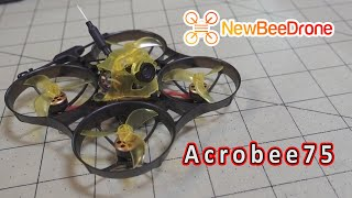 NewBeeDrone AcroBee75 Whoop Review ????