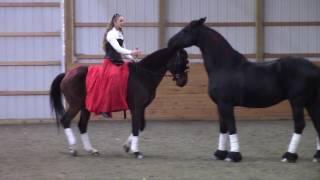 "Sandra Beaulieu ""Sway"" - Bitless Dressage on Andalusian - Liberty with a Friesian"