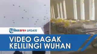 Video Rekaman Mengerikan Ribuan Gagak Terbang di Langit Wuhan, Dikaitkan Korban Tewas Virus Corona