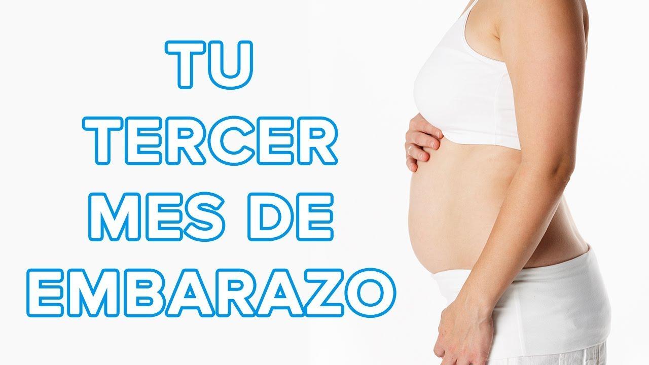 Tu tercer mes de embarazo | Así crece tu bebé, así cambia tu cuerpo ????