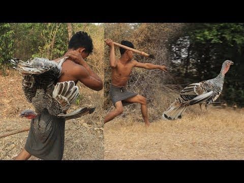 , title : 'Primitive Technology - Find Food regrettably in the jungle - Cooking turkey Eating delicious