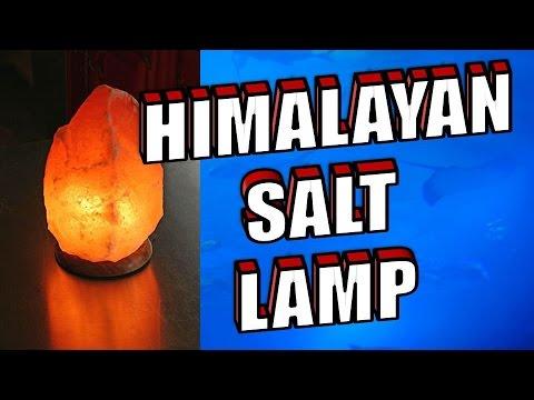 himalayan salt lamps benefits - Free Music Downloads