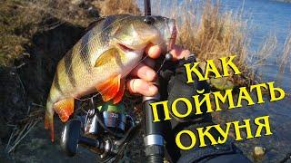Куда поехать на рыбалку в николаевской области 2020