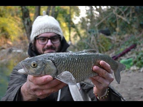Su quello che è preso zherekh in pesca di trofeo