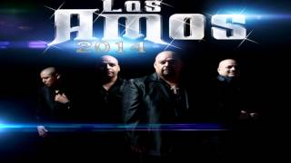 Los Amos De Nuevo Leon Vieja Pendeja 2014